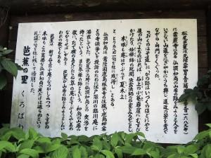 20130810_14